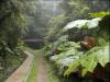 Santa Elena Pathway